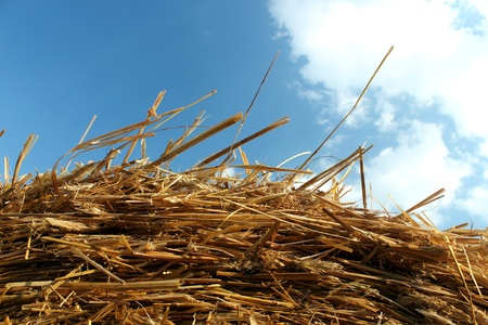 straw hay and blue sky village dream Stock Photo - 14605494