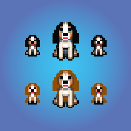 cavalier: cavalier king charles spaniel dogs pixel art vector illustration