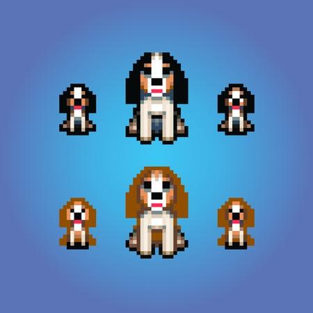 cavalier: cavalier king charles spaniel dogs pixel art vector illustration