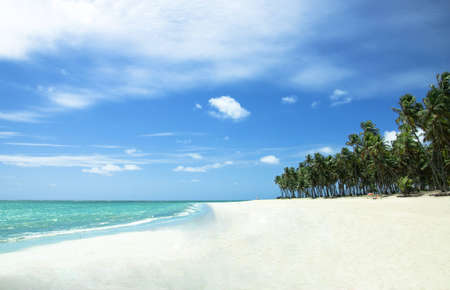 Tropical Beach with White Sand in Brazil Stock Photo