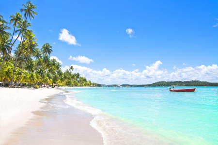 brazil beach: Red Boat in a Tropical Beach in Brazil, Carneiros Beach, Pernambuco