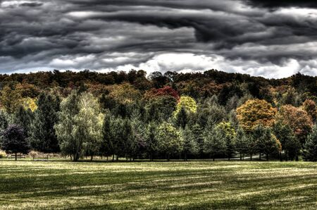 Clouds and woodland