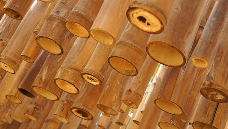 Bamboo decoration Standard-Bild