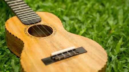 Mango wood Ukulele on grass