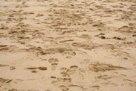 Foot prints on the beach photo