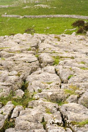 yorkshire dales: Campo opiniones en los valles de Yorkshire y en cerca de Malham