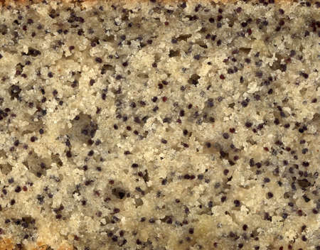 A scan of some poppy seed cake Stock Photo