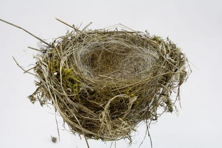Birds Nest shot on white background at different angles in a light cube, white ballenced with a greycard in RAW. Stock Photo