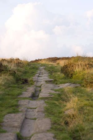 Roman Road on Harden Moor, West Yorkshire, cart-horse tracks clearly visible.