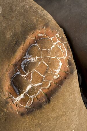 mineralized: Rocks with embeded fossils in Whitby Stock Photo
