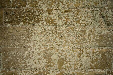 Stone textures of Whitby Abbey Stock Photo