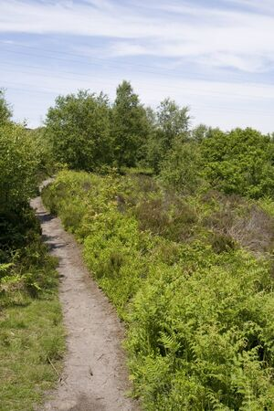 Moorland path on summers day with Blue skys. Stock Photo
