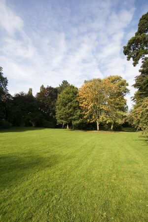 Landscape with fresh green grass and trees, with a bit of cloud in a blue sky. Stock Photo
