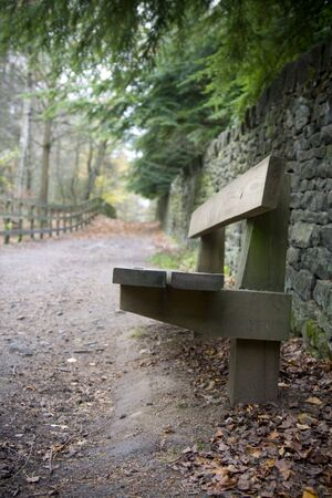 Park bench in countryside, looking into distance down path. Stock Photo