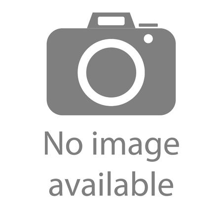 Nessuna immagine disponibile segno. Icona web Internet per indicare l'assenza di immagini fino al download. Archivio Fotografico - 88673746