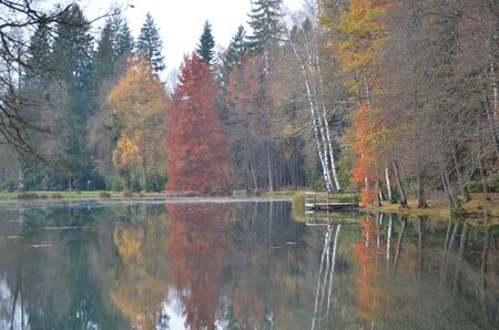 Koseze Pond, Martinek Pond or Lake Koseze is an artificial pond at the edge of Ljubljana, the capital of Slovenia. Park scene during autumn time.