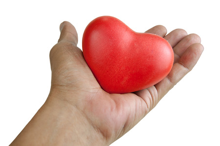 dating strategy: handle with heart care. Hand holding a red heart. isolated white background with clipping Paths Stock Photo