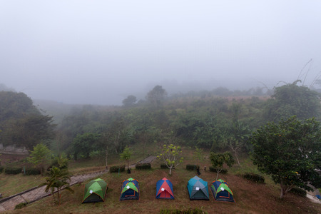 atmosfera: Carpa atm�sfera campamento con niebla de la ma�ana.