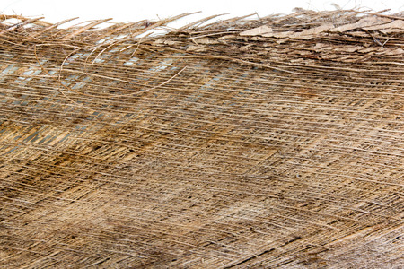 color skin brown: bark the petiole dry bract or old leaf coconut. brown color and dry skin texture mesh nature.