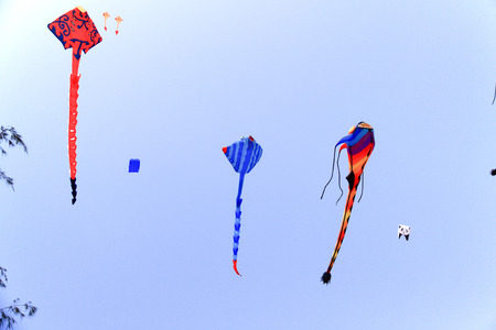colorful kite in the blue sky at the summer holidays time
