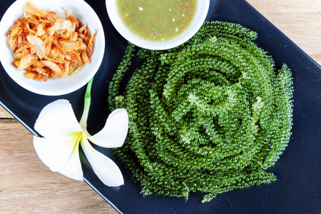 common sense: sea grapes or green caviar and spicy sauce on a black dish the wood table Stock Photo