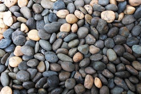 Colorful round rocks floor background with a black and white round rock.