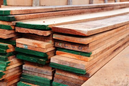 sheet pile: cut timber wood pile a sheet in the area for construction