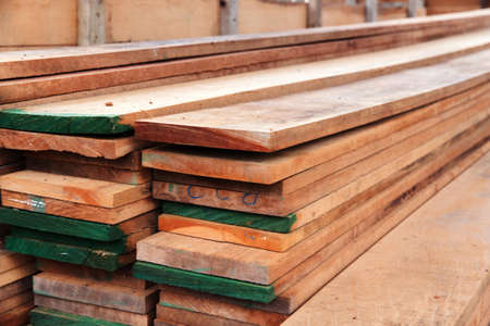 sawed: cut timber wood pile a sheet in the area for construction