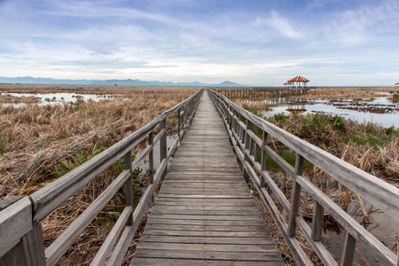 wooden bridge stretches across the dry grasslands and the flooding at Khao Sam Roi Yot National Park, Thailand Stock Photo