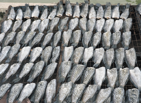 expose: Dried fish expose to sun, Bangkok, Thailand, Food image Stock Photo