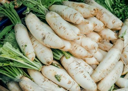 De verse organische Chinese radijs of de verkoop van Raphanus sativus Linn in stedelijke markt.