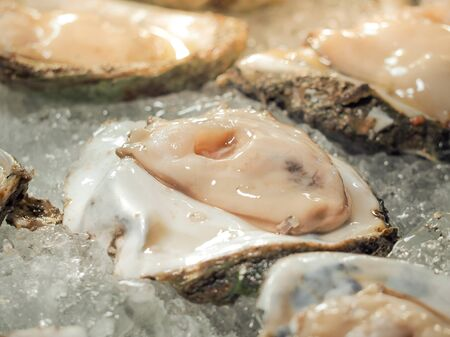 Fresh Saltwater oysters slices in ice. Open oysters lie on a ice plate. Selective focus. Stock Photo