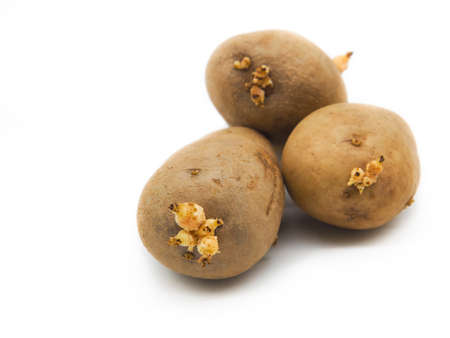 Organic raw potatoes on white background. Close up and selective focus. Standard-Bild