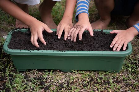 young children planting seeds in garden.Hand holding seed and black soil in pot