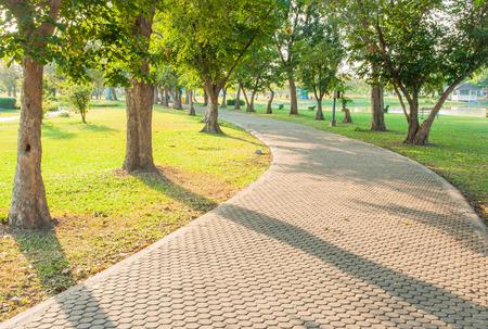 Jogging track at green garden photo