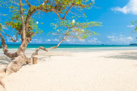 koh: Playa de arena blanca en Koh Chang Usland