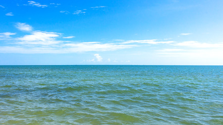 paysage marin: Seascape