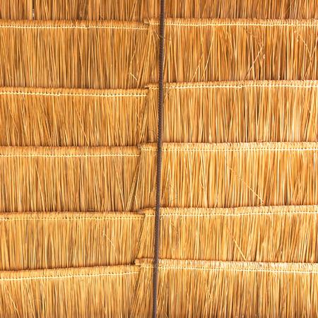 primitivism: Insulation roof grass background