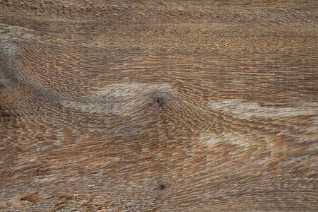 hardwood: Old Hardwood textured