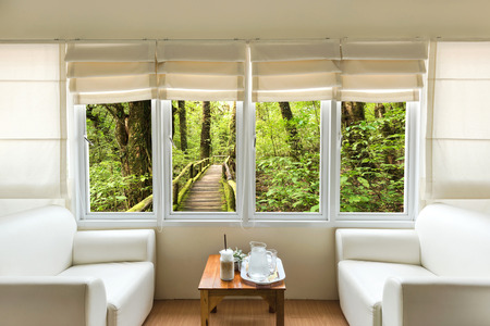 Living room with evergreen  forest Stockfoto