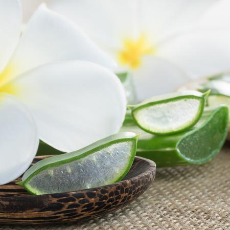 plumerias: Close-up Aloe vera with plumerias background Stock Photo