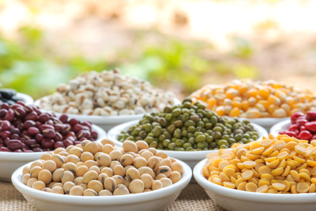 protien: Prepared soybean and multi colour bean for cooking