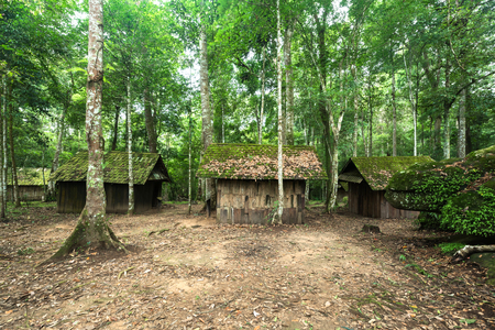 evergreen forest: Old wooden house at the evergreen forest