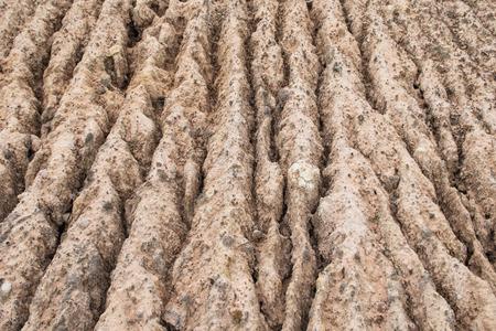 soil erosion: Soil Erosion Pattern and Textured Stock Photo