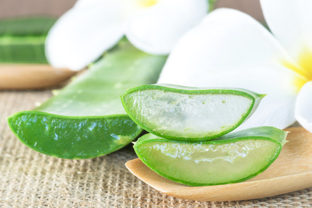 Aloe Vera use in spa for skin care