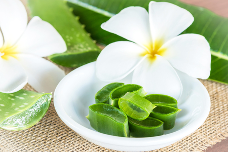 spa flower: Aloe Vera for skin treatment and use in spa for skin care
