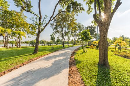 jogging track: Jogging track at green garden in the morning