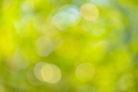 Bokeh groene aard voor achtergrond