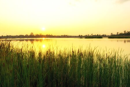 rural area: Sun set over the tranquil lake