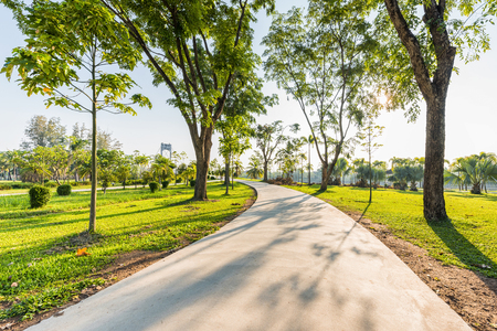 jogging track: Jogging track no people at green park landscape, Jogging track with green garden in morning